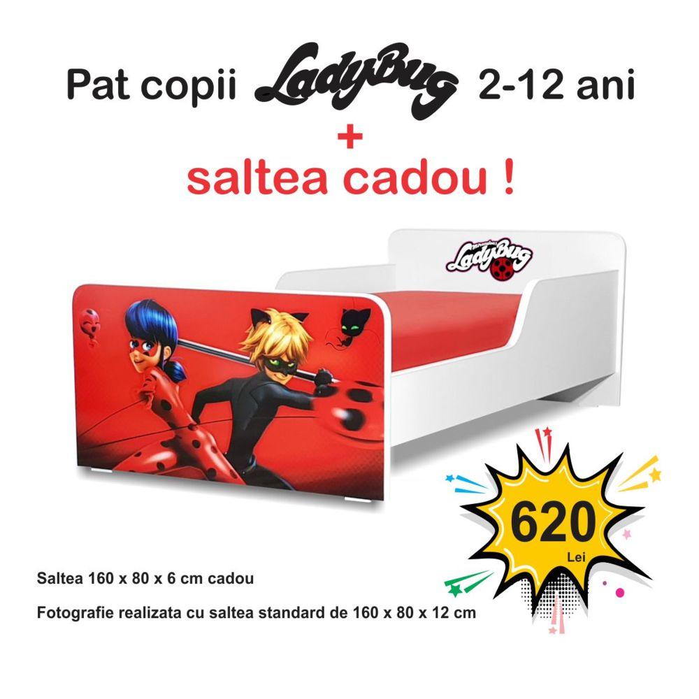 Pat copii Start LadyBug 2-12 ani cu saltea cadou